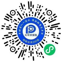 中国太平洋财产保险股份有限公司河南分公司网络管理员扫码投递简历