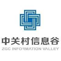 南阳中关村信息谷科技服务有限责任公司