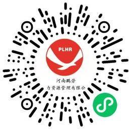 河南鹏劳人力资源管理有限公司财务经理/主管扫码投递简历