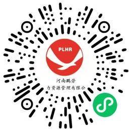 河南鹏劳人力资源管理有限公司商业运营经理/主管扫码投递简历